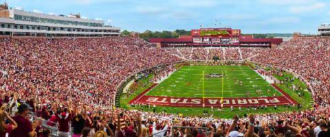 Florida Seminoles stadium, Journal of Wild Culture ©2017