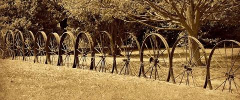 wagonwheel_fence, Journal of Wild Culture