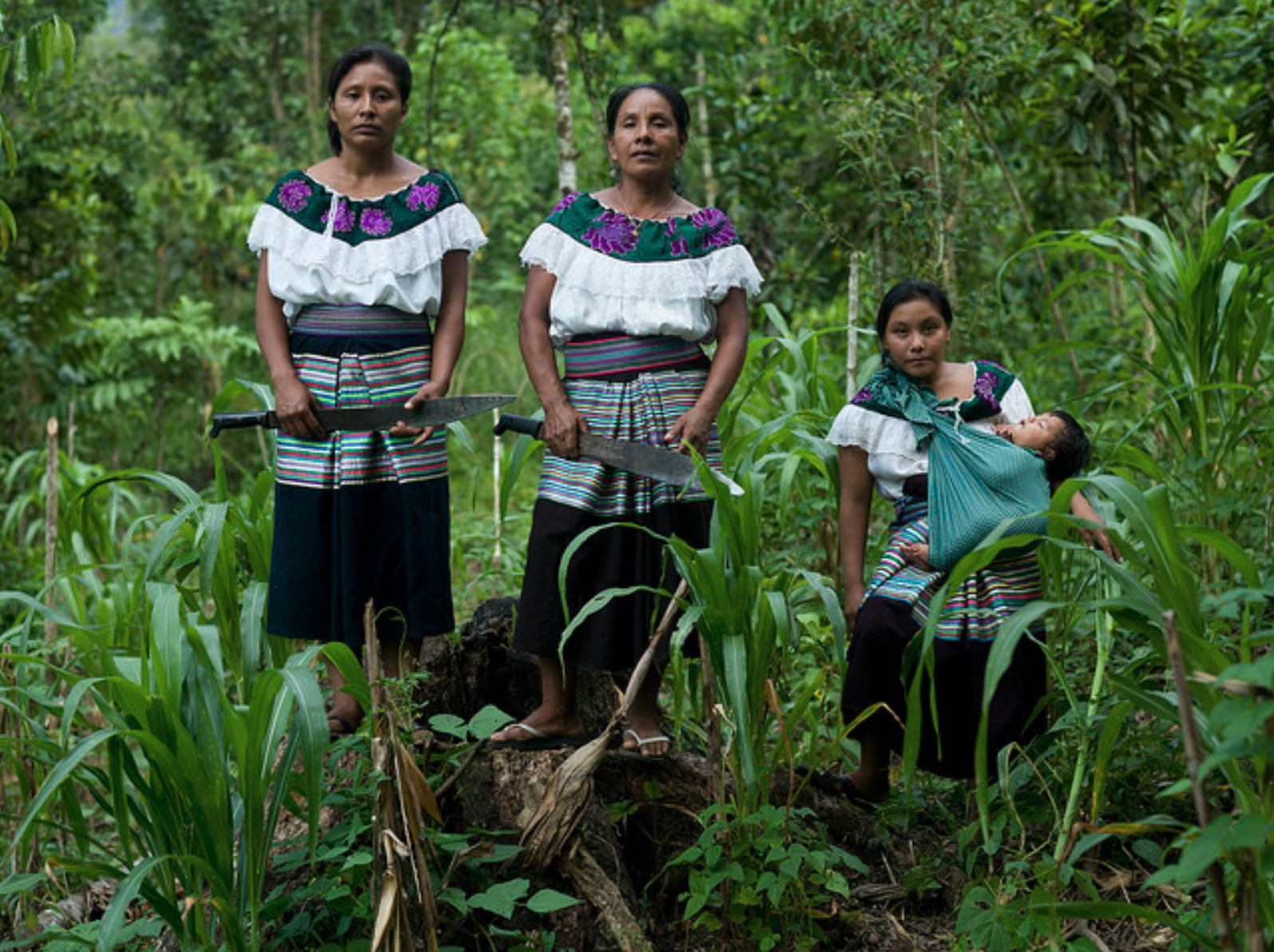 Mexican corn farming women, journal of wild culture, ©2020