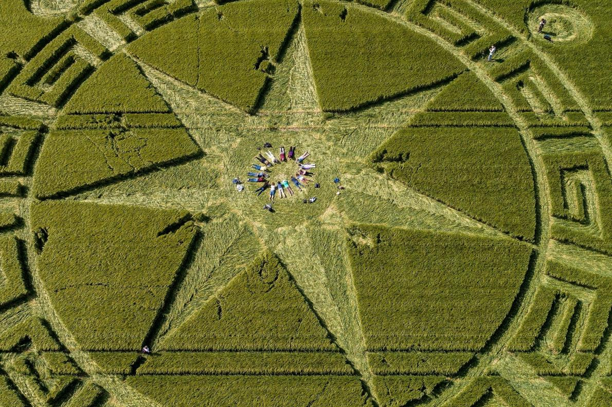 Crop circle enthusiasts, journal of wild culture, ©2020