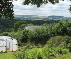 polytunnel in landscape, journal of wild culture, ©2019