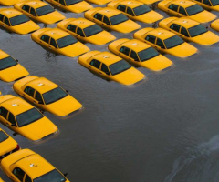 Taxis underwater, Journal of Wild Culture, ©2016