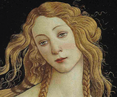 Venus, Botticelli, Journal of Wild Culture, ©2016