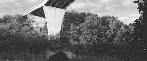 Bloomfield Bridge, Wild Culture, Bridging Nature, ©2015
