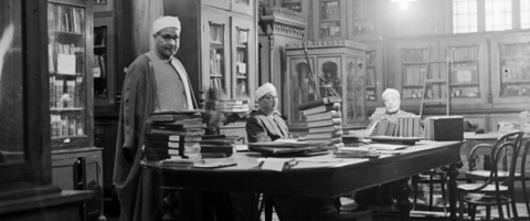 Librarians, Cairo, Wild Culture, ©2014